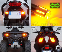 LED-Heckblinker-Pack für Harley-Davidson Road King   1690